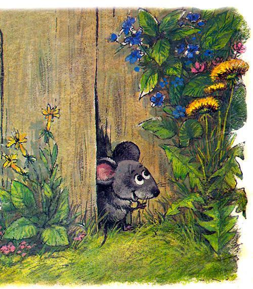 мышонок у дыры в заборе