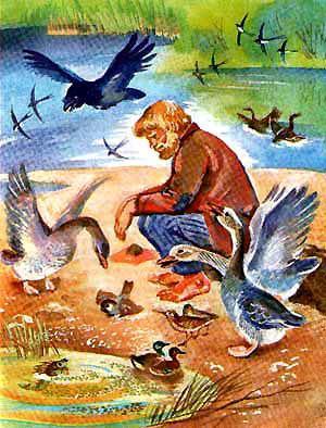 мужик и домашние птицы