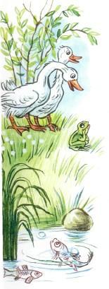 лягушка и гуси у озера