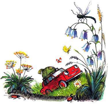 машина выезжает на лужайку