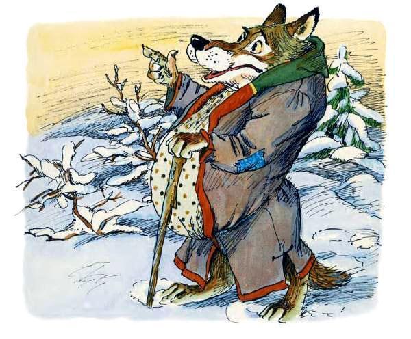 играет огромный живот у волка