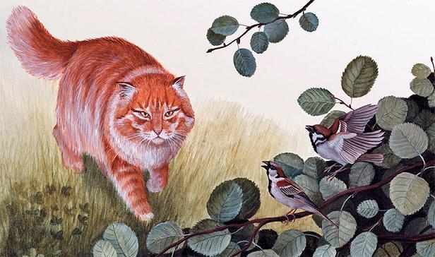 кот и воробушки