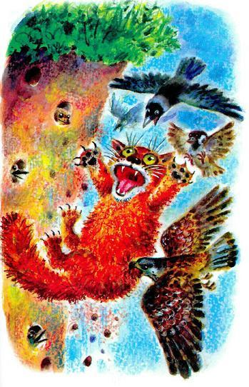 кот атакован птицами