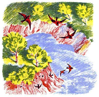 над рекой, над крутым обрывом, носились молодые ласточки-береговушки