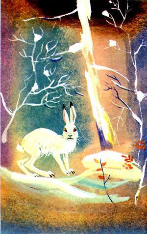 Снег и заяц