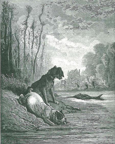 Собаки и ослиная туша