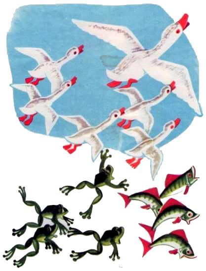 утки и лягушки с рыбами