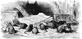 Ссора собак с кошками и кошек с мышами