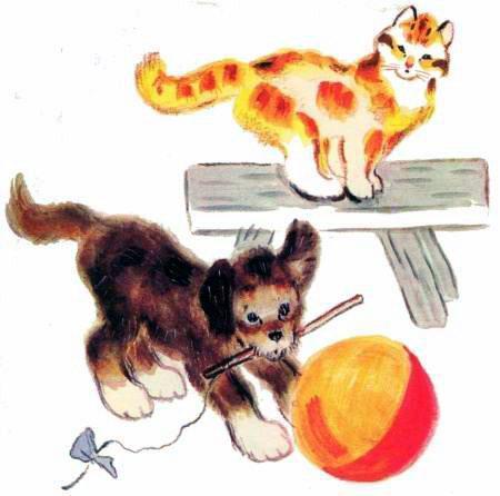 кот и щенок