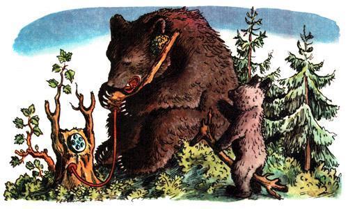 Телефон позвонил медведь