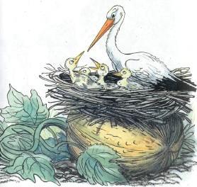 аист и аистята в гнезде