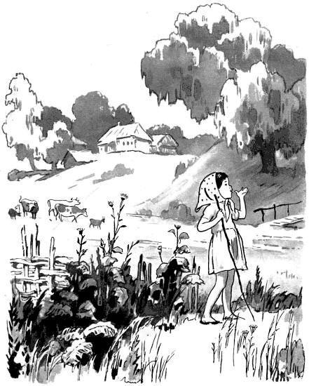 девочка пасет стадо