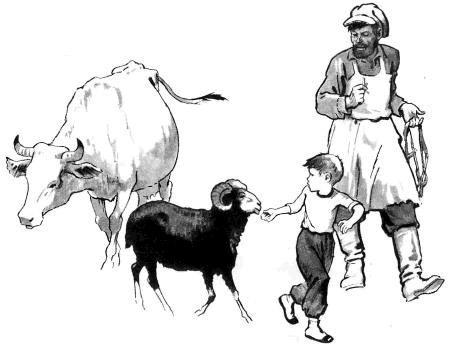 мальчик и баран