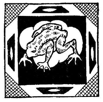 Урубу и жаба