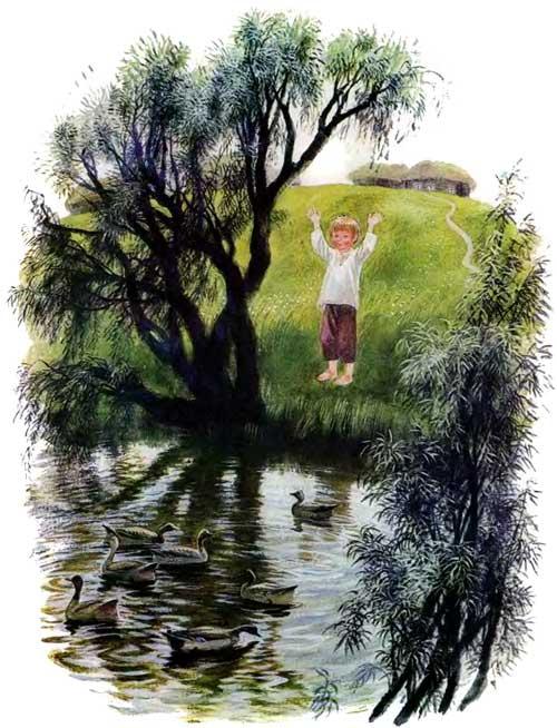 мальчик у пруда и Утки плавают в озере