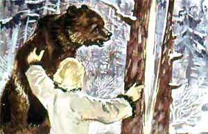 Подвел Матти медведя к толстой ели, надрубил ее топором, в щель клин вставил.