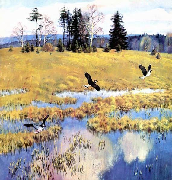 Чибисы летают весной над речкой