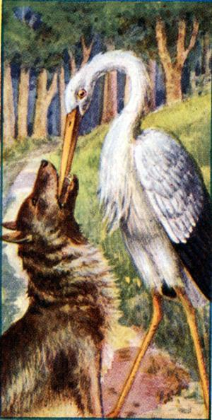 Волк и Цапля