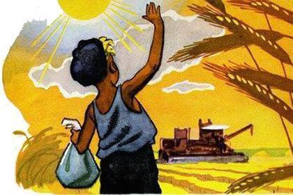 мальчик на пшеничном поле жатва