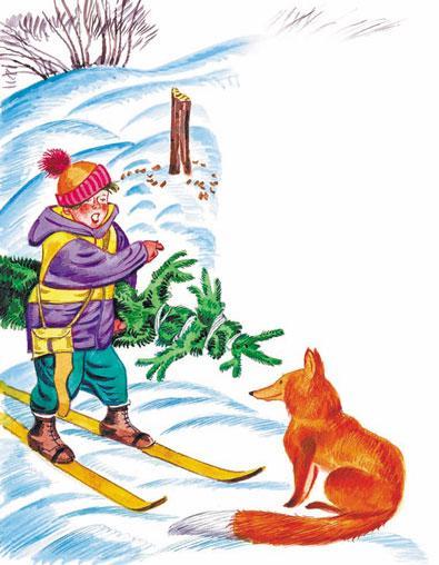 мальчик на лыжах везет Ёлку