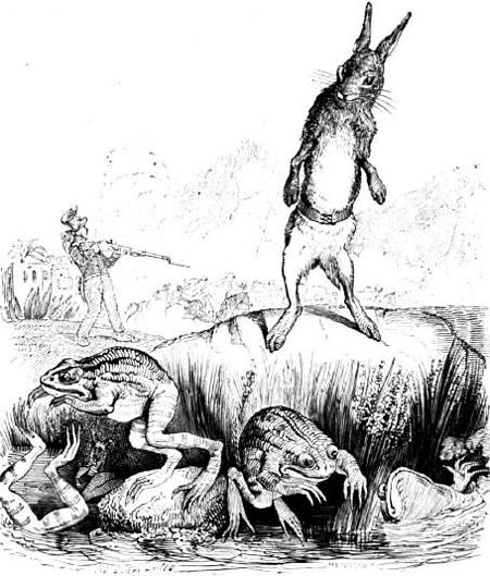 Заяц и лягушки