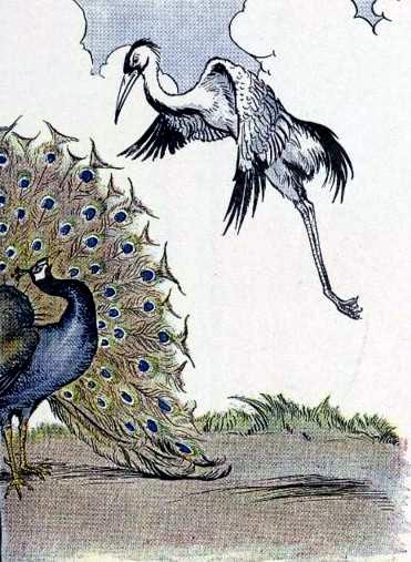 Журавль и павлин
